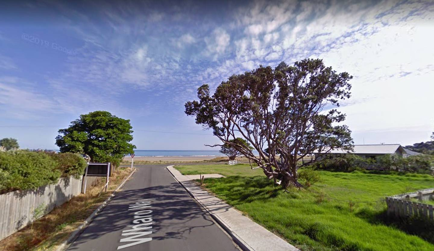 The centuries old Pōhutukawa in Ahipara, before its partial felling. Image / Google