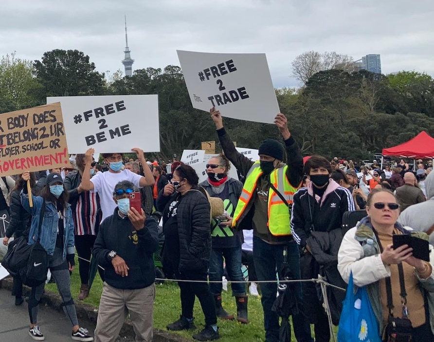 Protestors gather at the Auckland War Memorial Museum Picture / Tūmamao Harawira