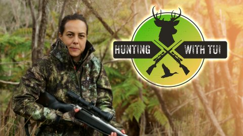 Hunting with Tui