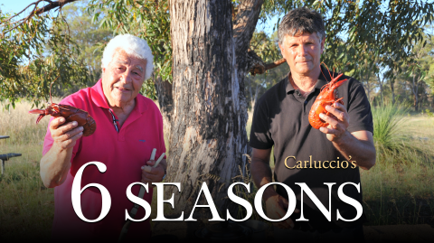 Carluccio's 6 Seasons