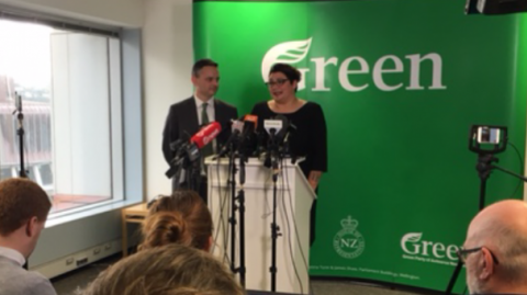 Metiria Turei, Greens co-leader - Image / File